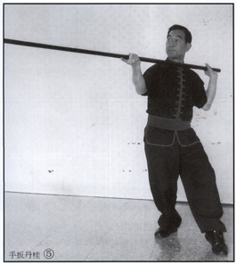 Master Frank Yee - Fifth Brother Eight Trigram Pole - Blowing the Flute Pole